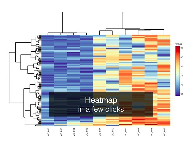 How to build a hierarchical clustering heatmap with BioVinci
